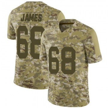 Youth Nike Las Vegas Raiders Andre James Camo 2018 Salute to Service Jersey - Limited