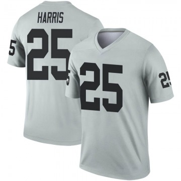 Youth Nike Las Vegas Raiders Erik Harris Inverted Silver Jersey - Legend