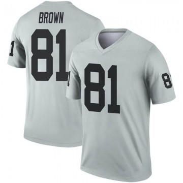 Youth Nike Las Vegas Raiders Tim Brown Brown Inverted Silver Jersey - Legend