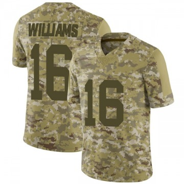 Youth Nike Las Vegas Raiders Tyrell Williams Camo 2018 Salute to Service Jersey - Limited